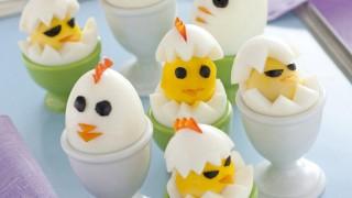 pulcini di uova